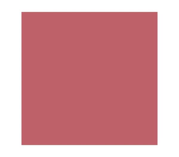 rouge lèvres pierre ricaud rose